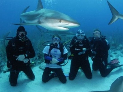 Foster Family Portrait with Sharks